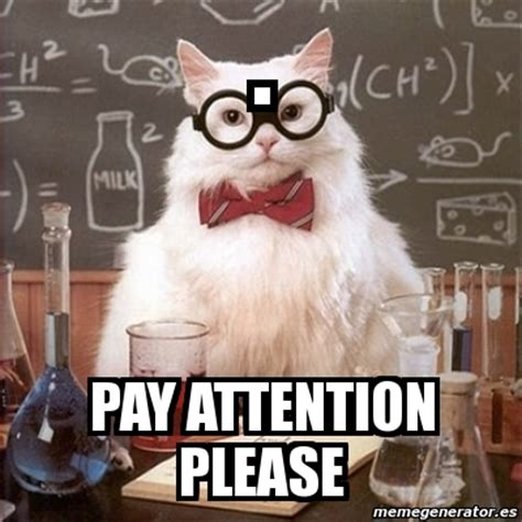 Pay Attention To Me Meme - meme chemistry cat pay attention please 4464807