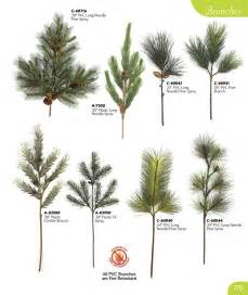 types of pine trees species pictures to pin on pinterest