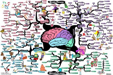 relentless state of mind the power of mental conditioning books neurodojo neuroscience because alzheimer s
