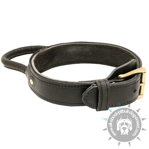 pitbull puppy collars get best equipmnet strong leather collar