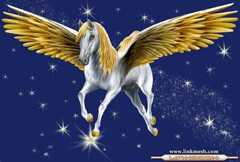 imagenes de unicornios reales con alas alas doradas pegasus