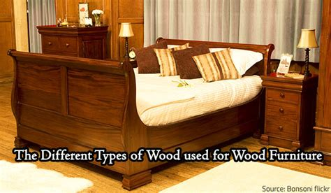 Types Of Furniture Wood by Types Of Wood Wood Boring Insects