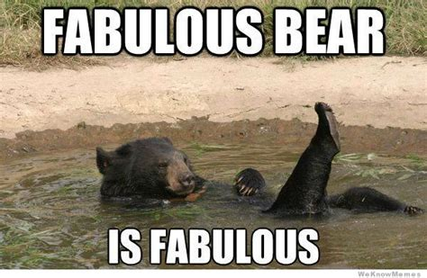 Fabulous Meme - fabulous bear is fabulous weknowmemes