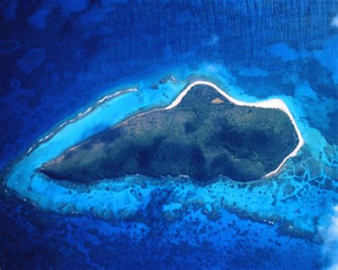 buck island st croix buck island reef