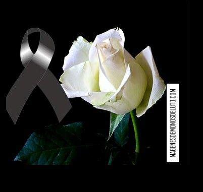 imagenes de rosas luto de juarez 132 mejores im 225 genes de imagenes de mo 209 os de luto en