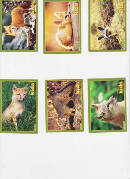national geographic cards free 6 national geographic trading cards foxes