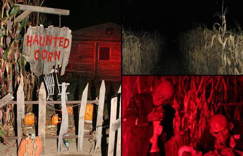 Corn Maze Haunted House by Corn Maze Craze Get Lost In Horror Fields
