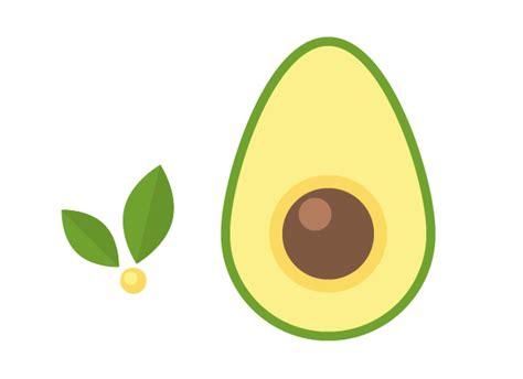 Avocado Pattern how to design a seamless avocado pattern in adobe