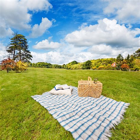 Picnic Blanket And Basket In Sunny Field Photograph by Jo