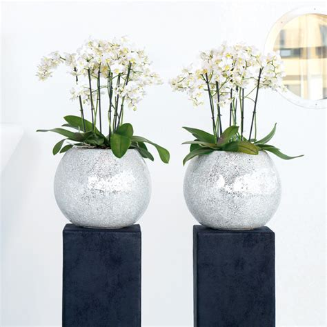 fleur ami fleur ami disco vase 17865 reuter onlineshop