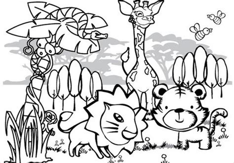 preschool jungle coloring pages 9 jungle coloring pages jpg ai illustrator download