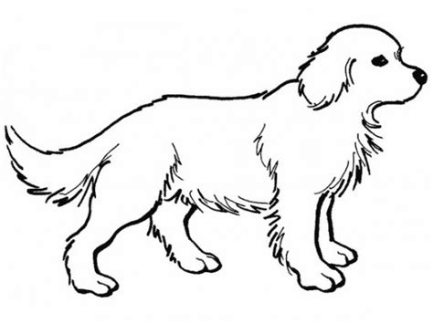 puppy and dog coloring pages free coloring pages dogs free