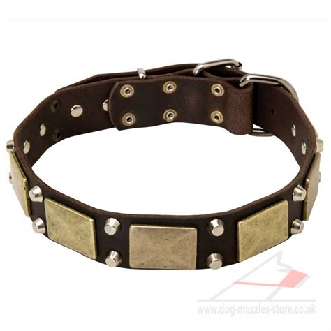 best collar best collar design gsd collar with brass plates