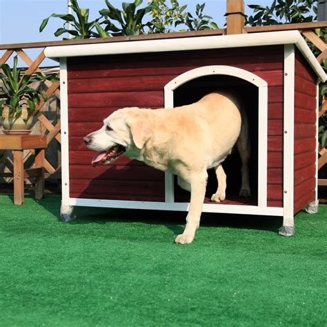 the perfect house dog 34 doggone good backyard dog house ideas