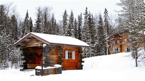 airbnb cabins colorado 100 airbnb cabins colorado 12 cozy cabins on airbnb