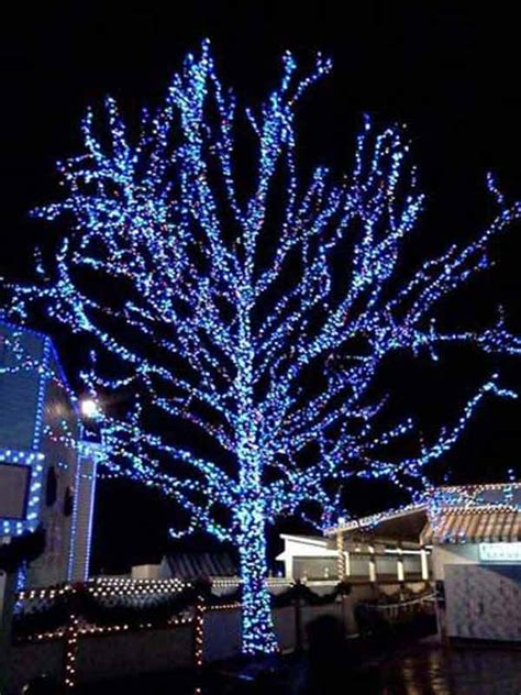 howto wrap christmas lights around tree branches top 46 outdoor lighting ideas illuminate the spirit amazing diy interior