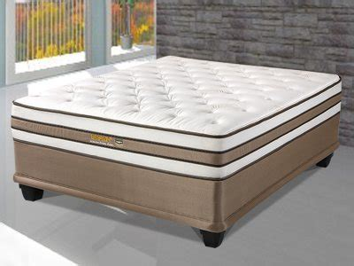 Mattresses South Africa by Restonic Orthozone Premier Pocket Beds And Mattresses