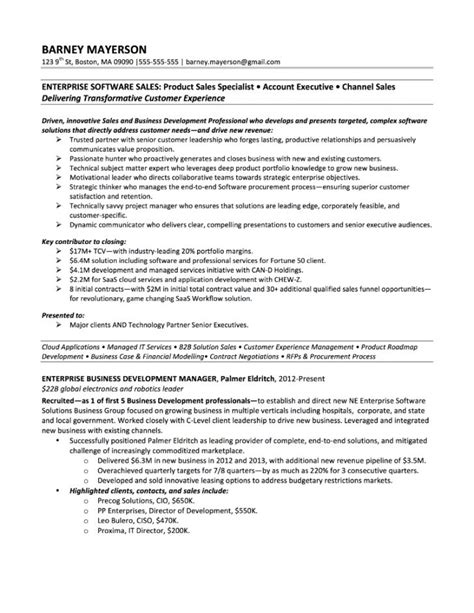 professional accounting resume sles technology sales resume exles inspiredshares