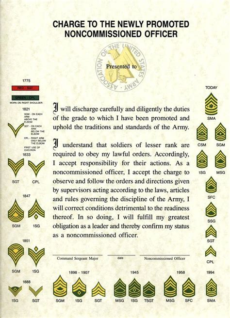 army promotion certificate template army promotion certificate template russd info
