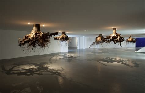 tree roots emerge from the ceiling in an installation by