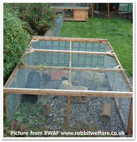 Pics Of Rabbit Hutches What Size Hutch And Run Should I Get What Do Rabbits
