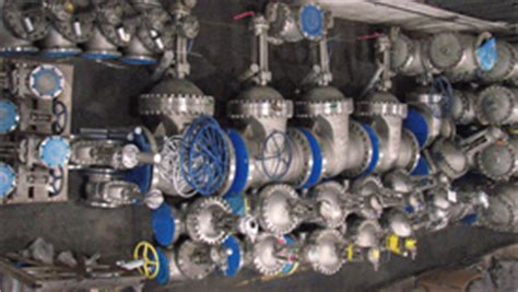neway swing check valve petrochemical valves