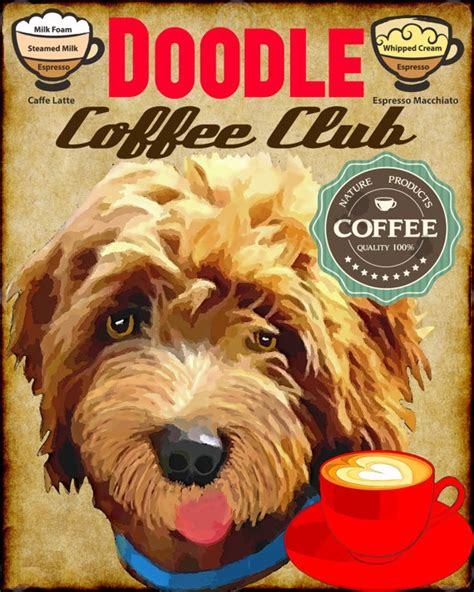 hack doodle club 17 best images about labradoodle on