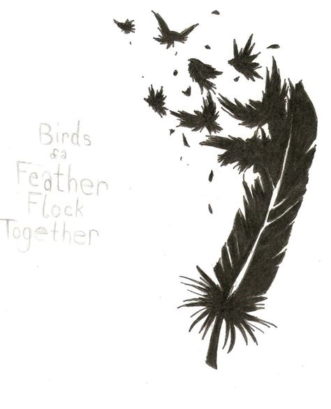 bird feather tattoo feather images designs