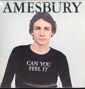 bill amesbury bill amesbury can you feel it at discogs