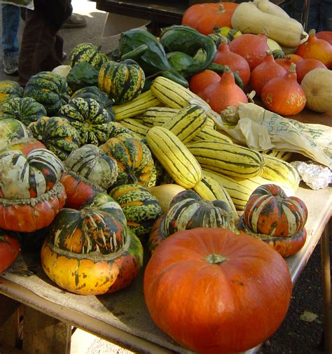 fall vegetables exhilarated living strategies for healthy exhilarated living