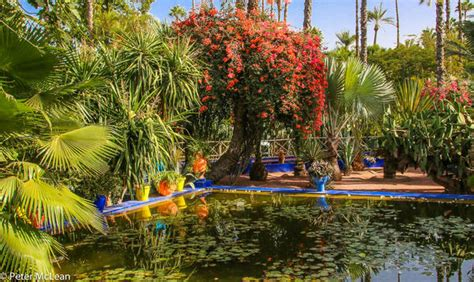 garten yves laurent marrakech majorelle garden marrakech travelgumbo