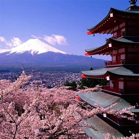 bollettino meteo co dei fiori vivre le japon