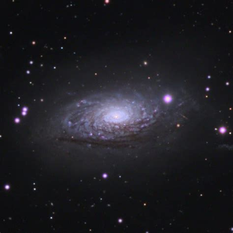sunflower galaxy m63 sunflower galaxy astronomy pictures at orion
