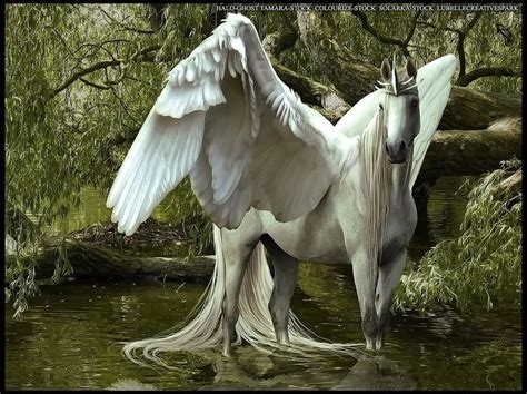 7 Mythical Creatures We Wish Were Real by Mythical Creatures I Wish