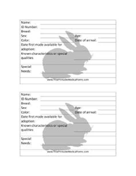 rabbit birth certificate template 1000 images about 4h ideas on rabbit and