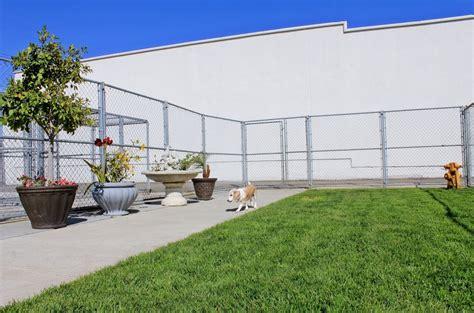 boulevard animal hospital garden grove boarding