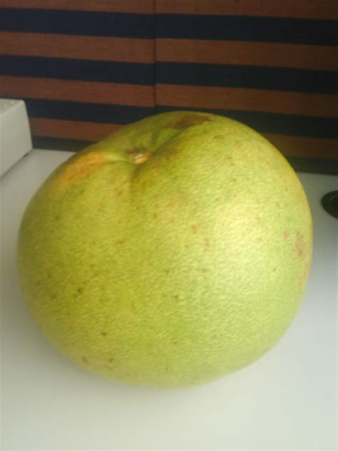 Detox Meaning In Malayalam by Grapefruit Meaning In Telugu Grape Benefits