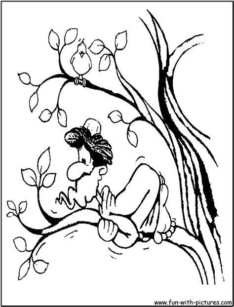 printable coloring pages zacchaeus free zacchaeus in tree coloring pages