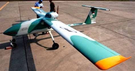 Drone Wulung tni beli 5 pesawat drone buatan asing untuk kembangkan teknologi drone indonesia prokimal