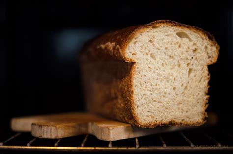 pane in cassetta fatto in casa pancarr 232 ricetta pane fatto in casa tweedot