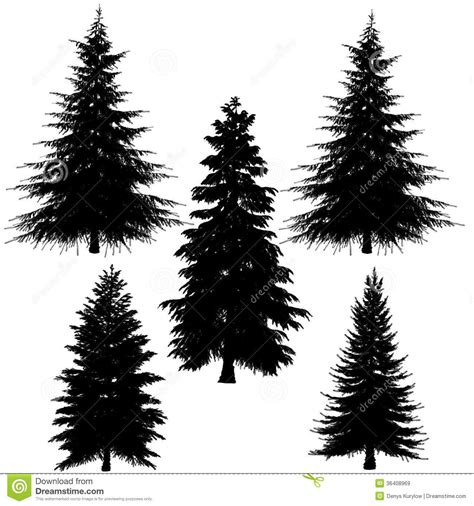 pine tree silhouette tattoo fir tree silhouette white background 36408969 jpg 1300