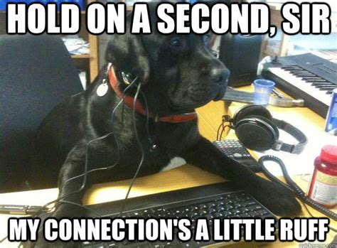 Dog On Computer Meme - friday fun 9 more funny it memes