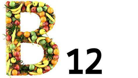 b12 alimenti vitamina b12 dove si trova gli alimenti che la contengono