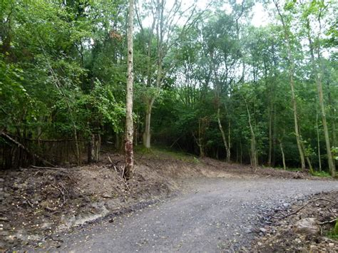 small section of woodland for sale woodland for sale wanderers end near telford shropshire