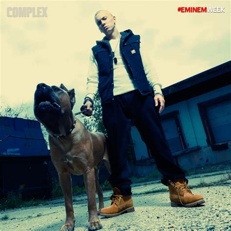 rottweiler lyrics you might see me walking a dead rottweiler marshall mathers