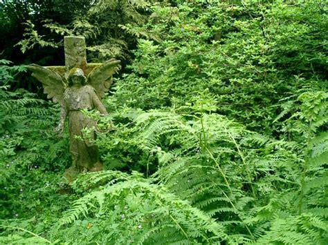 giardini mondo creagh garden 187 baltimore 187 irlanda giardini mondo