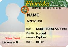 florida drivers license template optimus 5 search image florida drivers license template