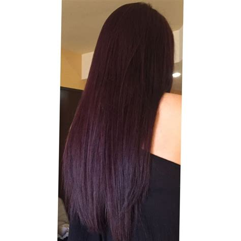 violet brown hair color best 25 violet brown hair ideas on plum brown