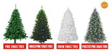 buying a christmas tree the sisi stylish guide to