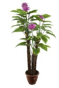 Best outdoor potted plants nautical coir doormat with outdoor